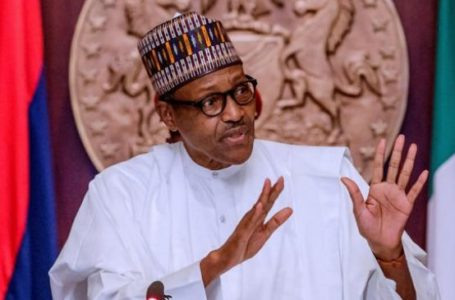 Buhari Vows to End Bureaucracy in Cargo Clearance Process at Nigerian Ports