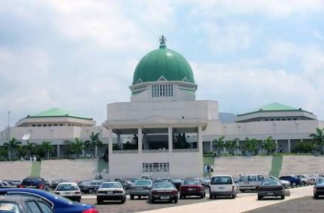 National Assembly:   PDP Appoints Minority Leader