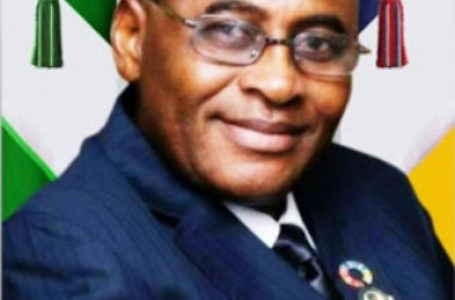 Why Nigeria Has Not Benefited From Blue Economy— Merchant Navy Association