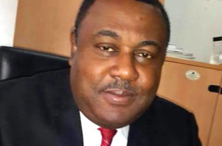 Nigerian Clearing Agents and Freight Forwarders Not Handling Project Cargoes—Tony Iju