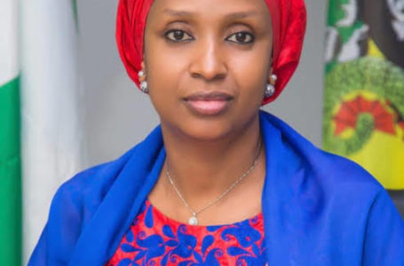 Stop Paying for Security at Lagos Anchorage Area, NPA Tells Shipping Companies
